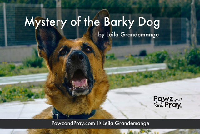 Barking dog tips