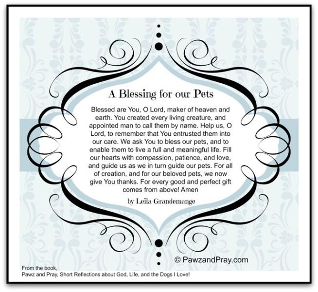pet blessings