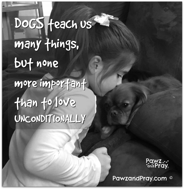 Dogs Teach Us Many Things, But None More Important Than To Love  Unconditionally!