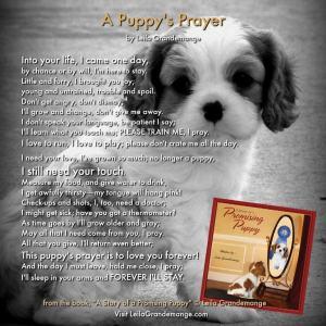 A Puppy's Prayer