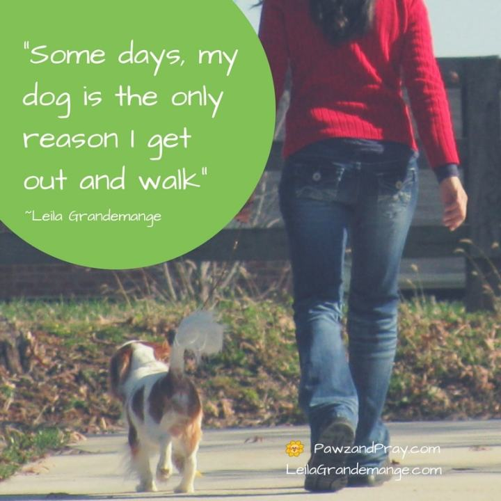Dogs give us a reason to walk