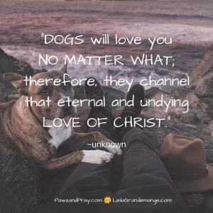 Dogs love you no matter what