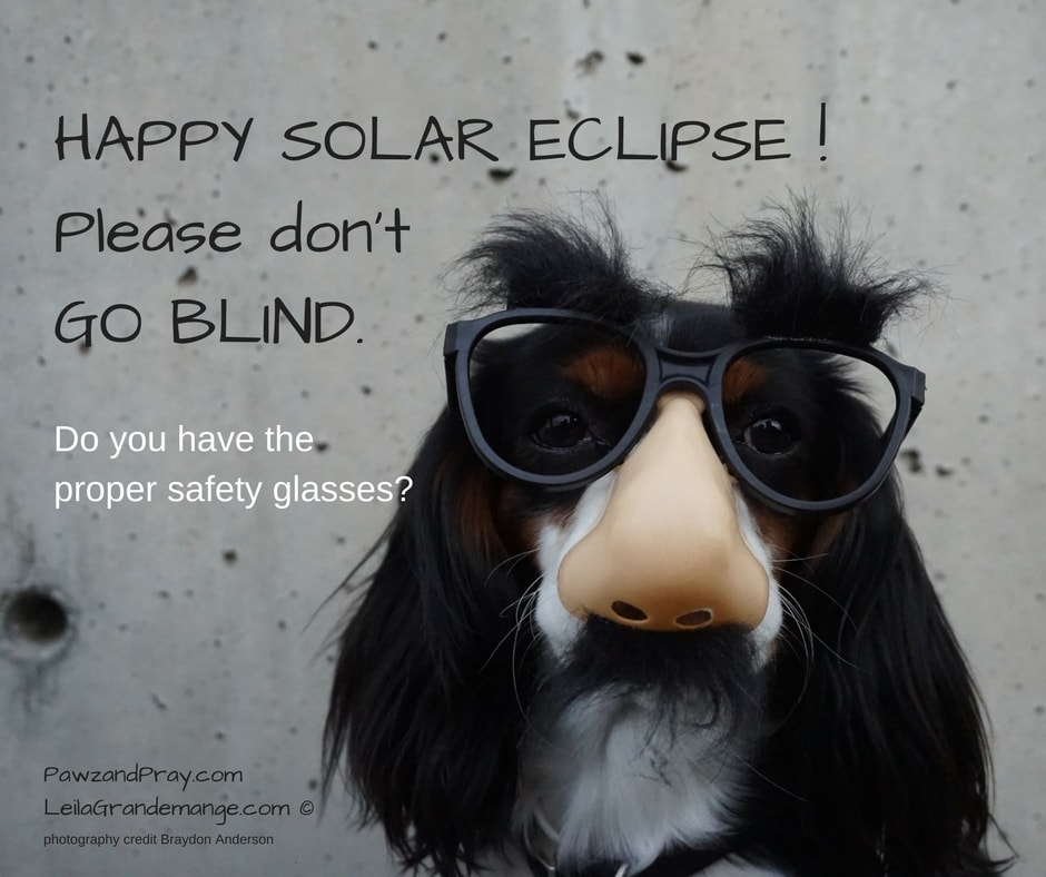 Do You have the Proper Solar Eclipse Glasses?