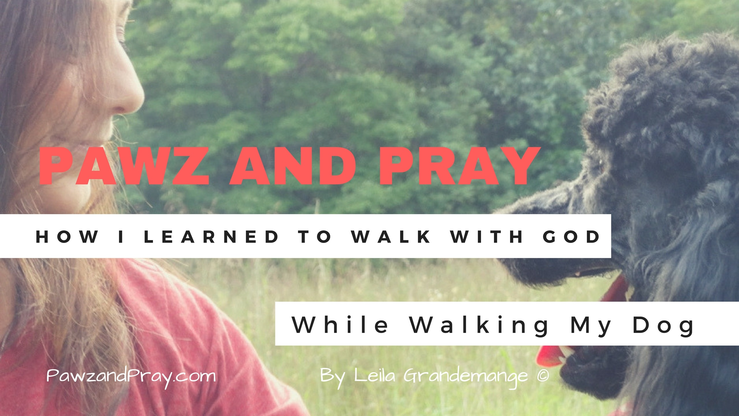 How I Learned to Walk With God While Walking My Dog [VIDEO]