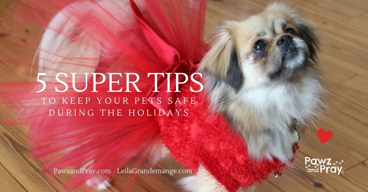 5 Super Holiday Pet Safety Tips!