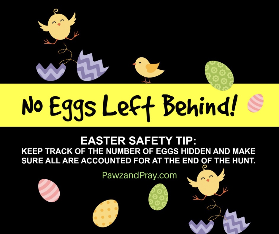 No Eggs Left Behind! [3 Easter Pet Safety Tips]
