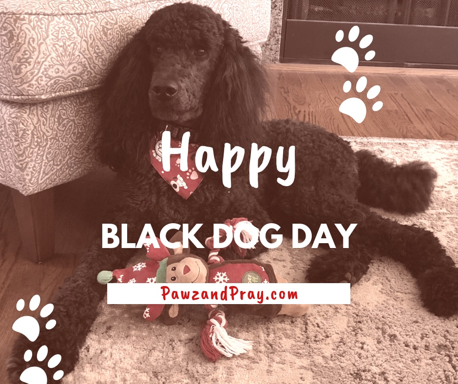 Happy Black Dog Day