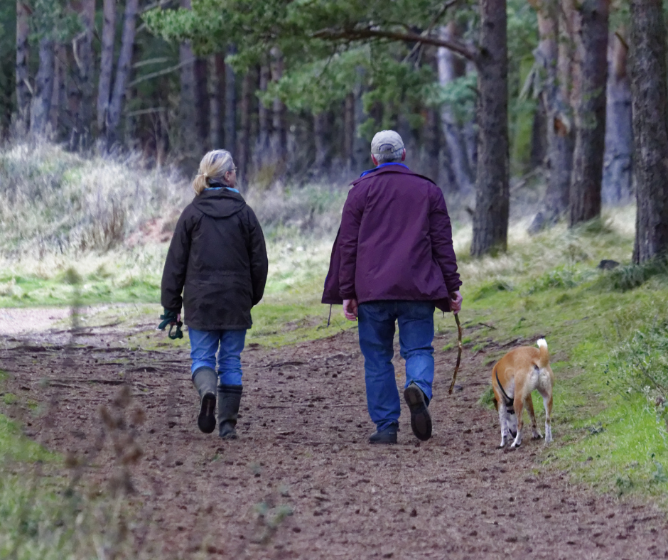 7 Amazing Benefits to Walking With Your Dog