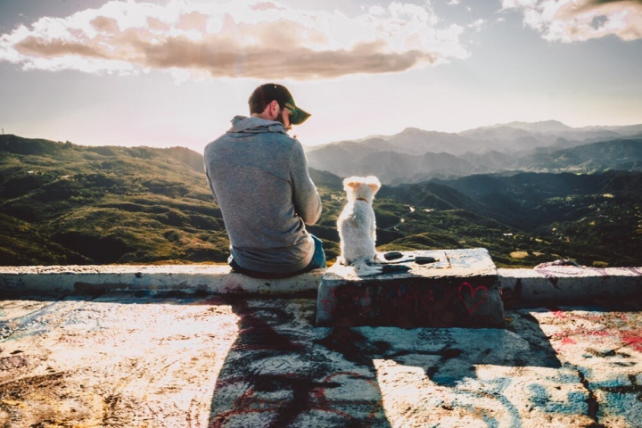 Best Life Lessons from Dogs – Pawz & Pray
