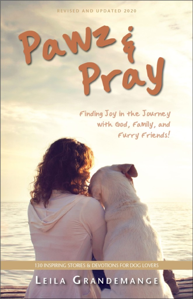 Pawz & Pray: Finding Joy in the Journey with God, Family, and Furry Friends!